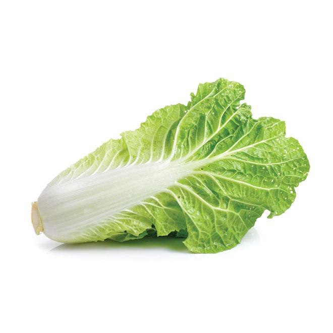 Chinese Cabbage Leaf 1 pcs